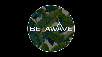 BetaWave TV: Spring Breaking Your Heart